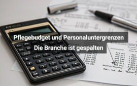 Pflegebudget2