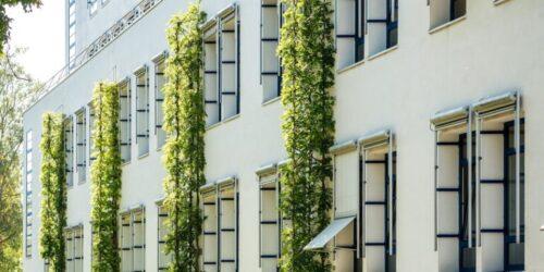 PA Klinik Nauen Ostfassade Sommer 768x1150